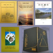 LK book covers for website1